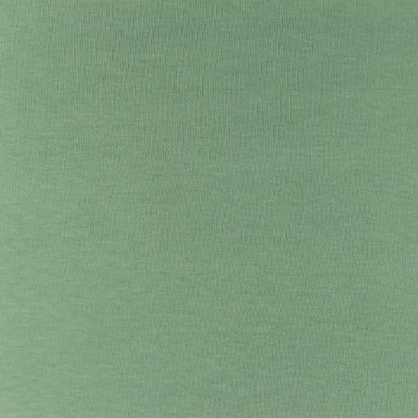 Interlock-Jersey-Iris-Altgrün
