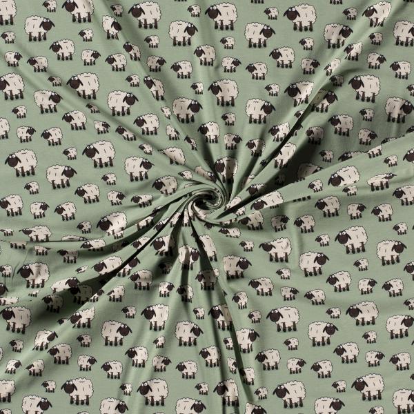 Baumwolljersey-Schaf-Altgrün