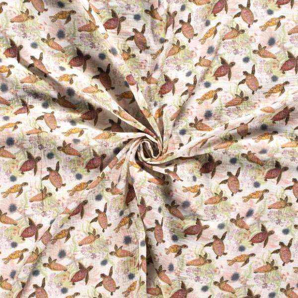 Musselin-Schildkröte-Grauweiss
